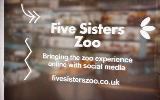 Five Sister Zoo - STV Local Lifeline