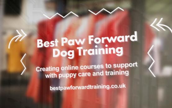 Best Paw Forward - STV Local Lifeline